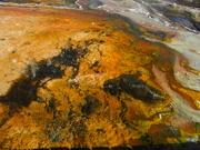9th Feb 2019 - Active thermal area  Orakei Korako NZ