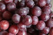 9th Mar 2019 - Purple grapes