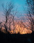 7th Mar 2019 - Sunrise