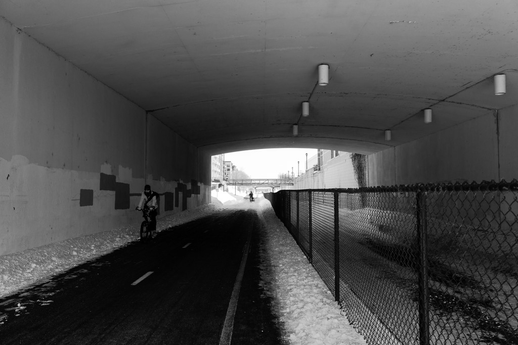 Bike Path by tosee