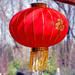 Red Japanese Lantern
