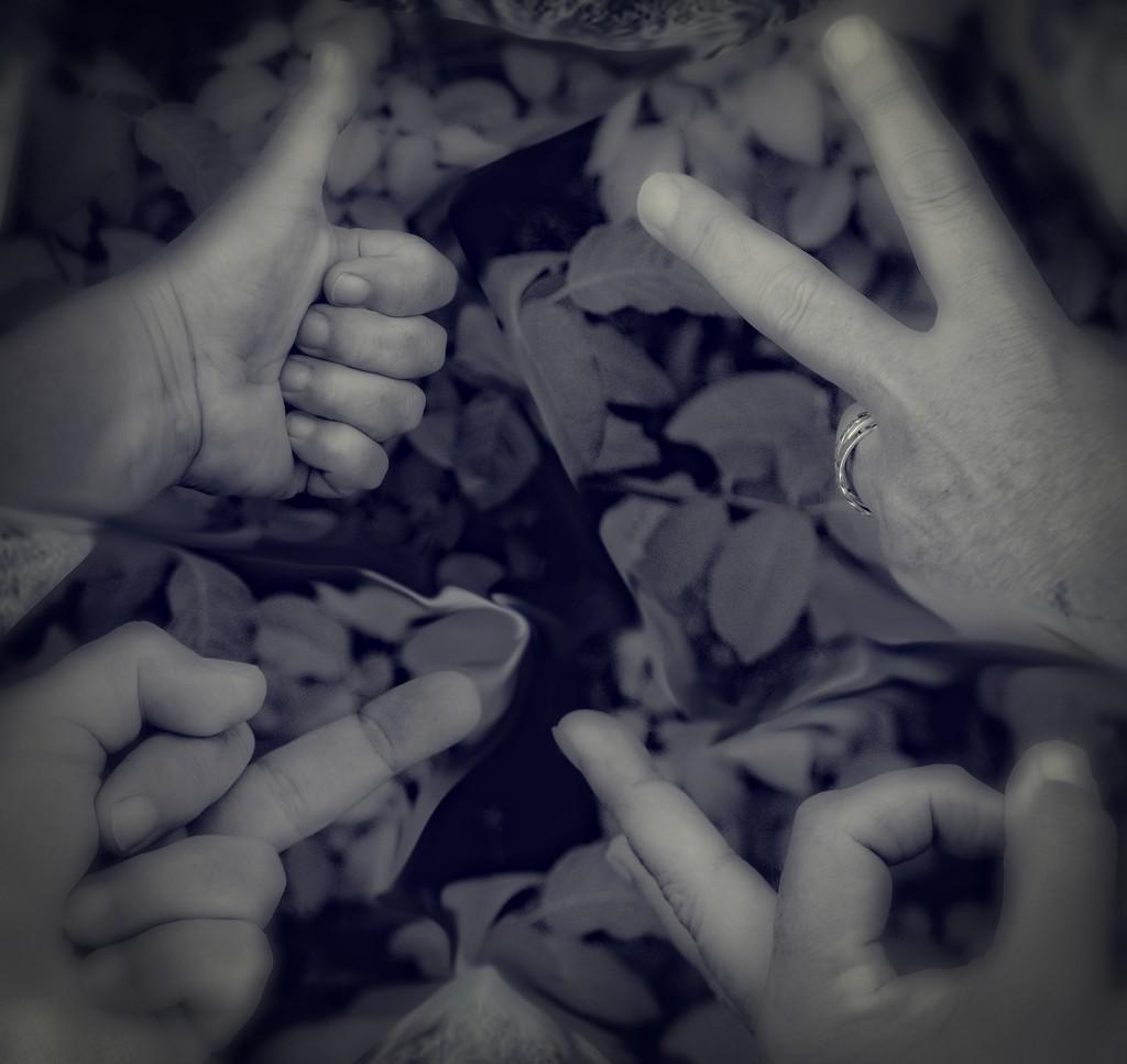 Get Pushed Week 345- Hand Gestures by annied