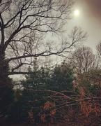 11th Mar 2019 - Weak Sun