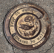 11th Mar 2019 - Manhole Cover