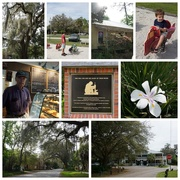 12th Mar 2019 - A Trip to Micanopy