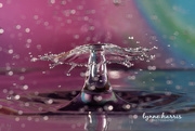 11th Mar 2019 - Water Drop Collision