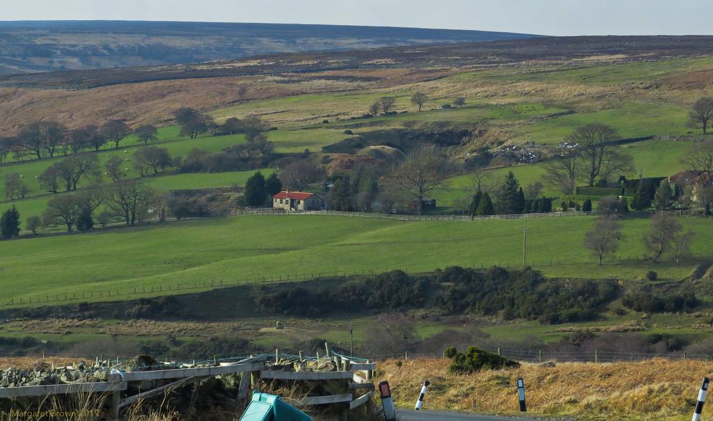 Towards Commondale by craftymeg
