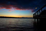 12th Mar 2019 - Lake Washington Walk