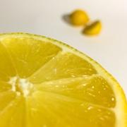 13th Mar 2019 - Lemon