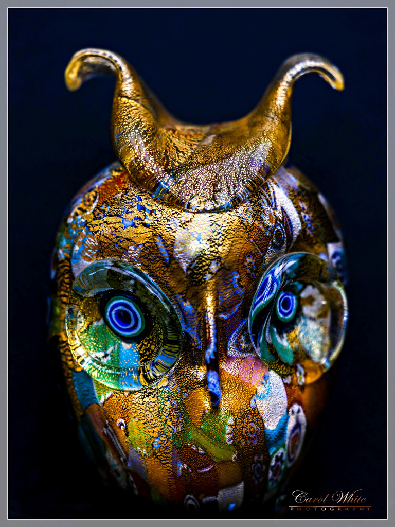 My Little Murano Owl by carolmw
