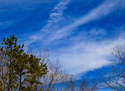 14th Mar 2019 - 073Whispy Clouds