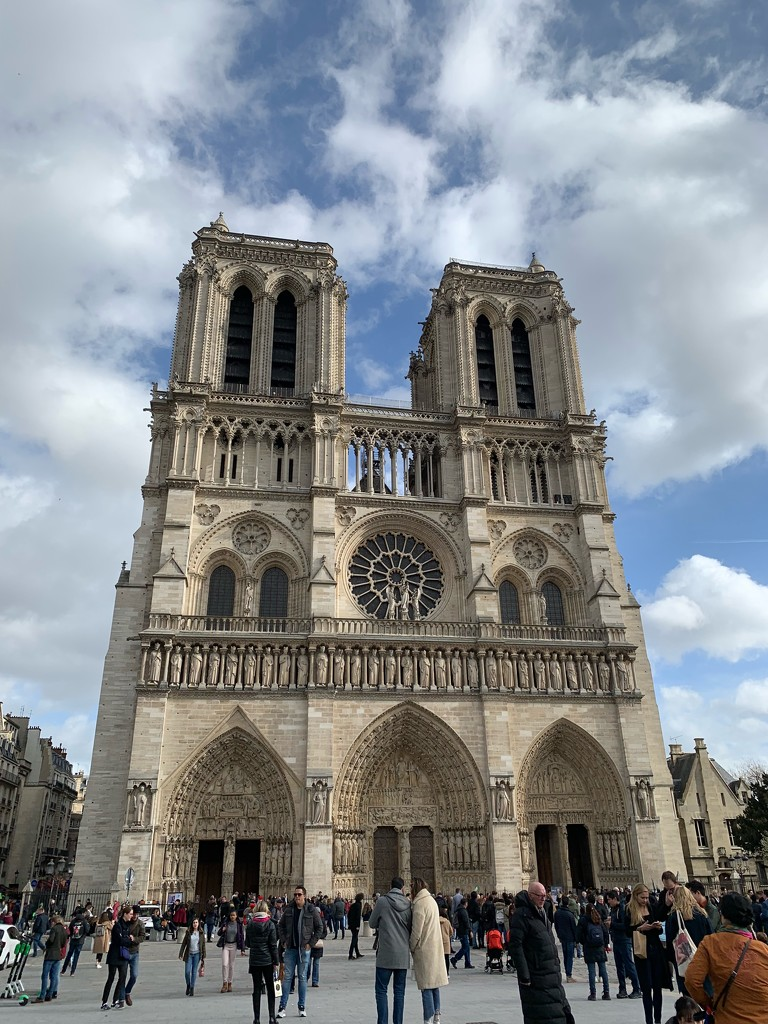 Facing Notre-Dame de Paris.  by cocobella