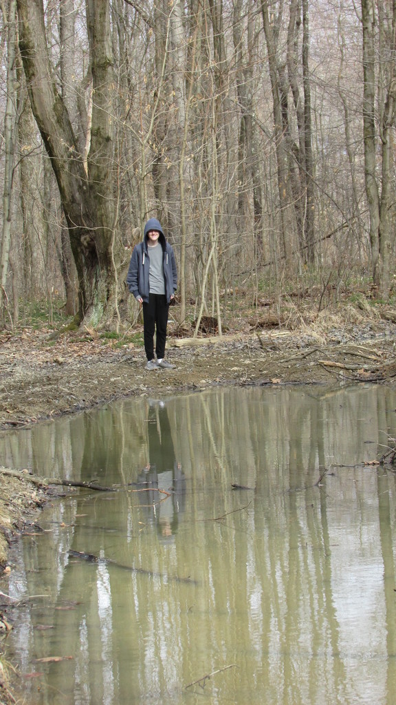 Reflection in a Mud Puddle by julie