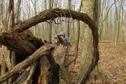 13th Mar 2019 - Gnarled Tree Trunk