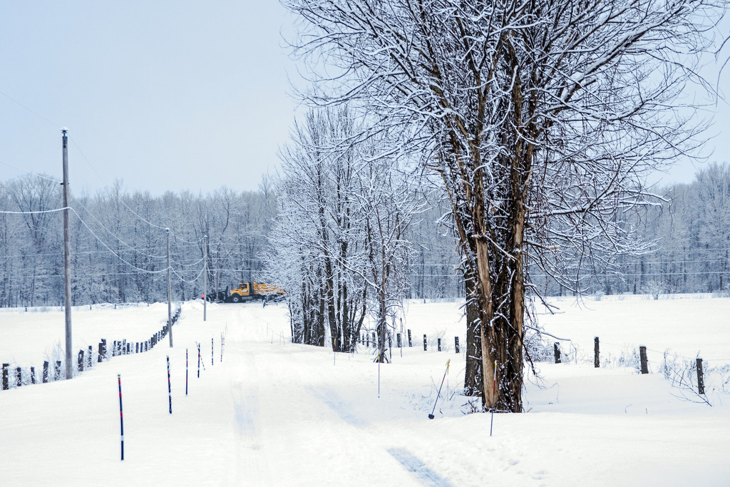 Plowing the Road by farmreporter