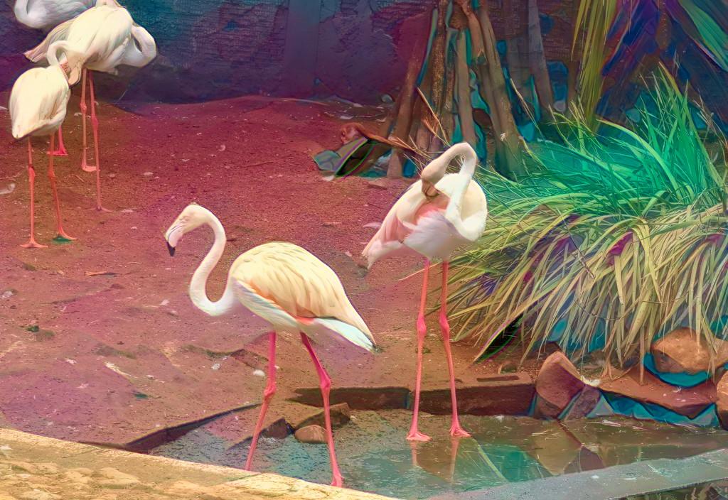 Flamingo Friday by ludwigsdiana