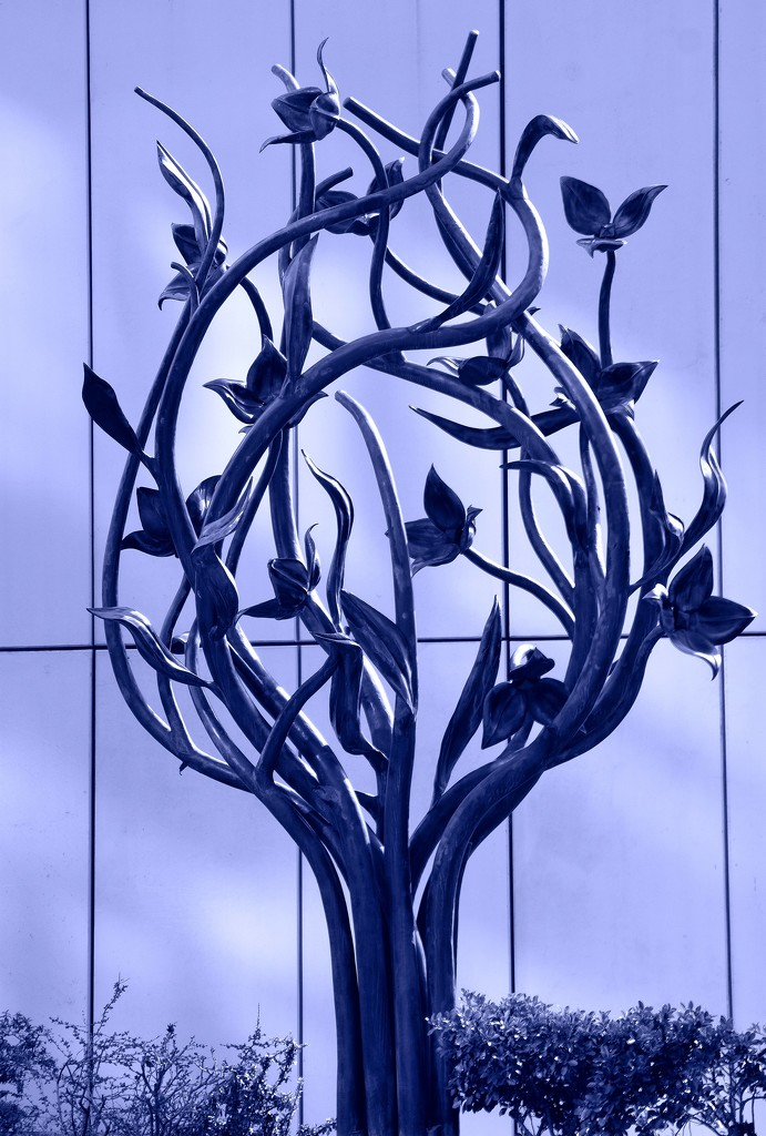 Iron Flower by kork