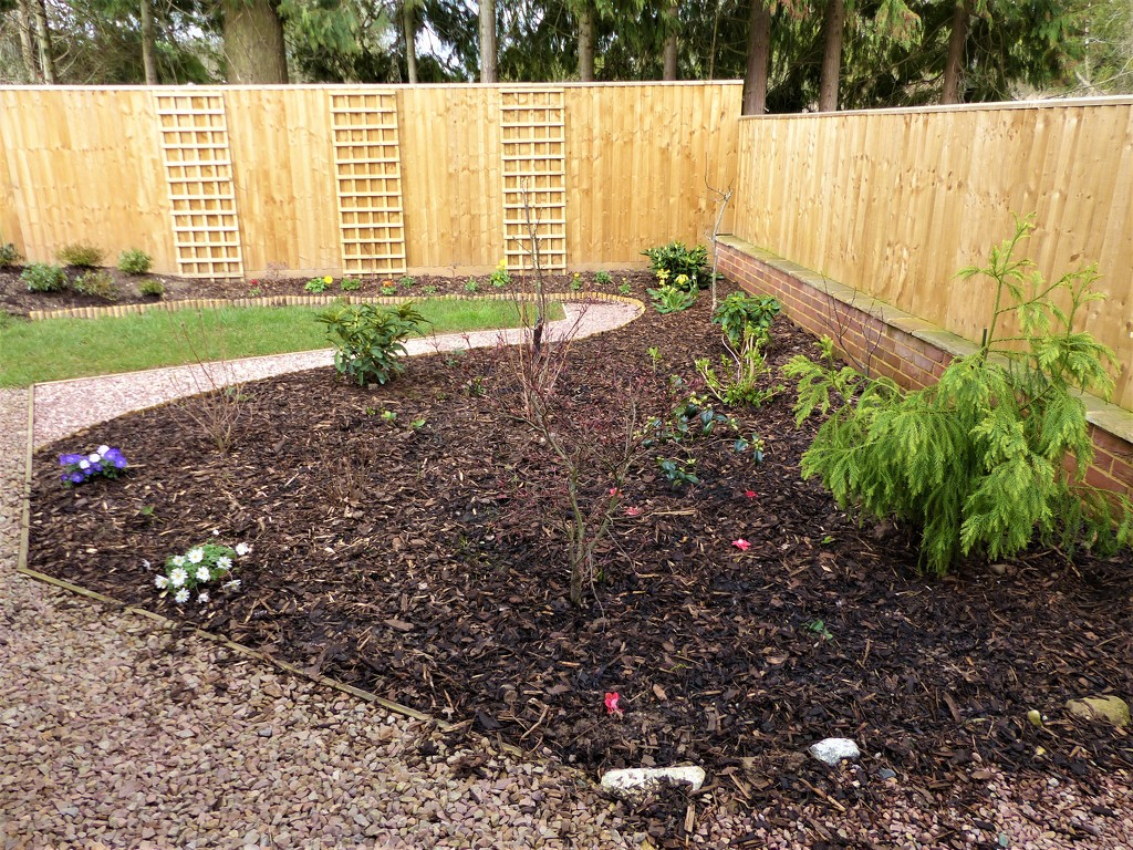 Another Completed Area of Garden by susiemc