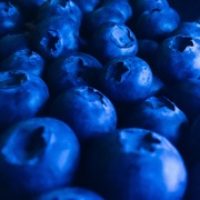15th Mar 2019 - BLUEberries
