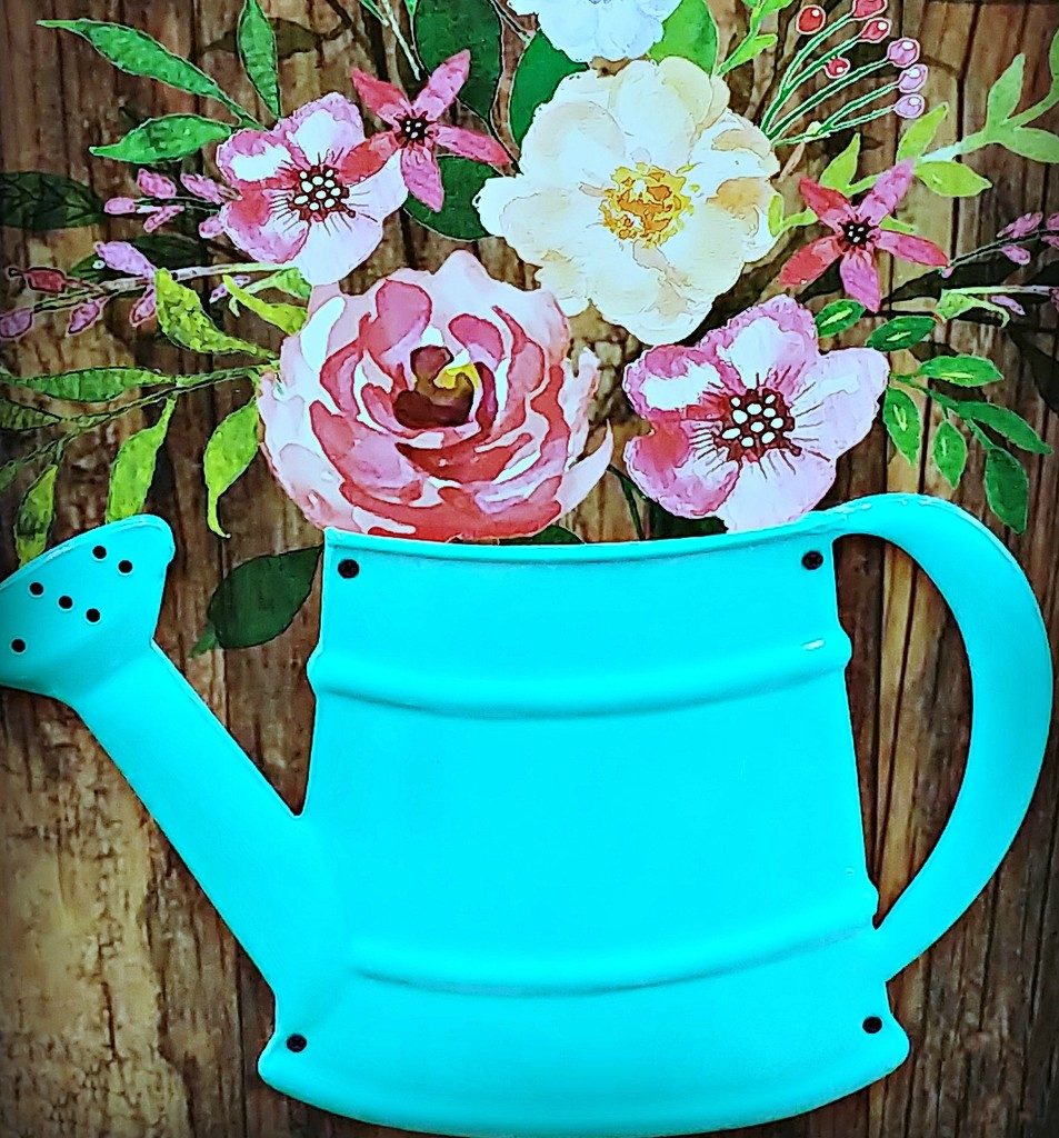 Watering Can  by jo38