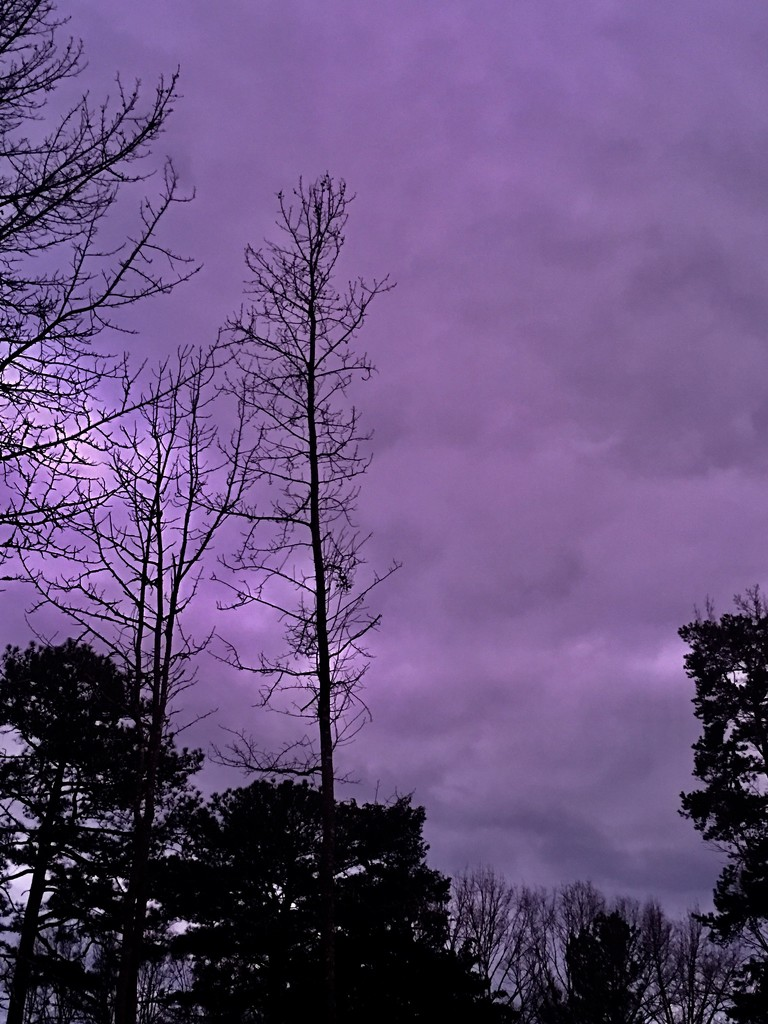 Storm Approaching  by moonshadow