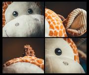 16th Mar 2019 - Goodbye Giraffe