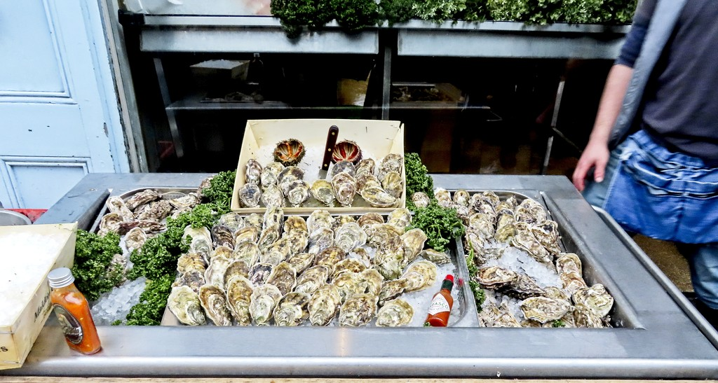Oysters by billyboy