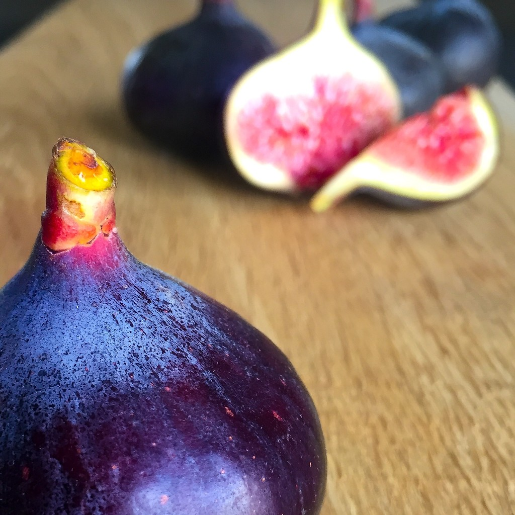 Figs by imnorman