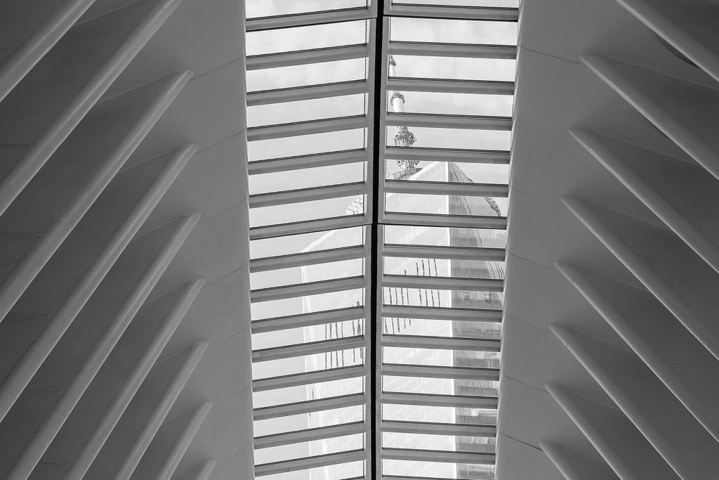 Glass Ceiling by shomarimason