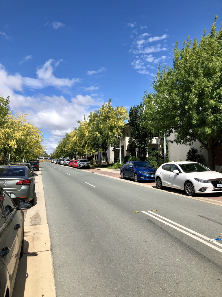 Streets of Canberra - Printers Way by nicolecampbell