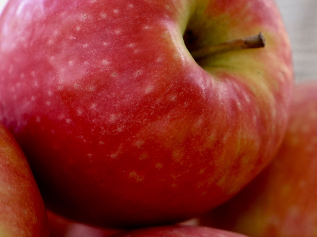Red Apple by carole_sandford