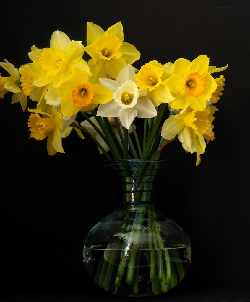March Flowers by randystreat