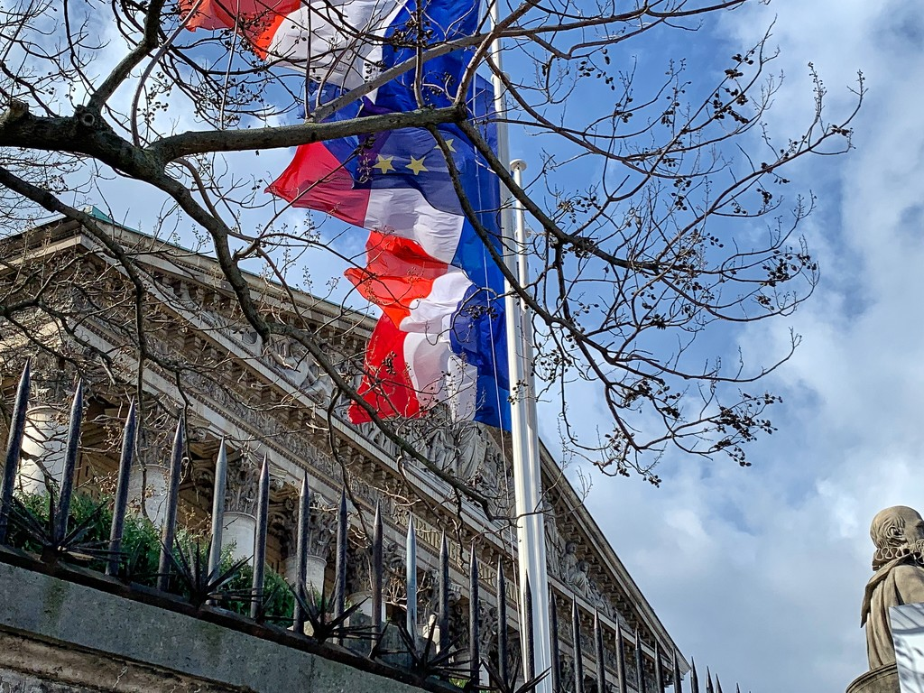 French flags.  by cocobella