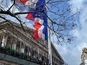 19th Mar 2019 - French flags.