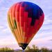 Desert Balloon