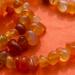 Rainbow Orange #3