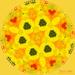 Daffodil Kaleidoscope