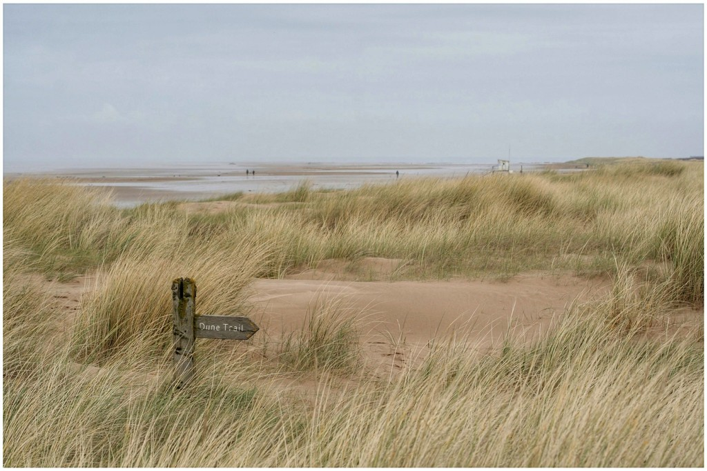 Ainsdale sand dunes today  by lyndamcg