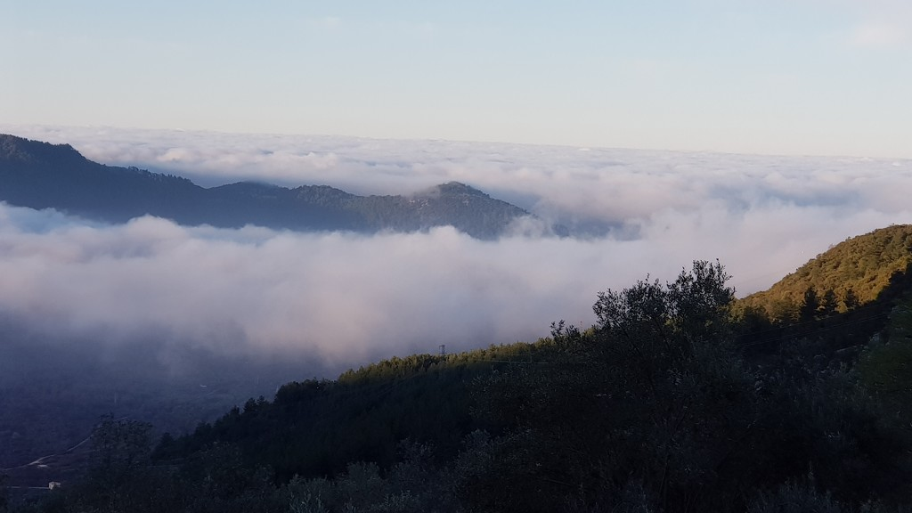 Low morning cloud by angelunderwater