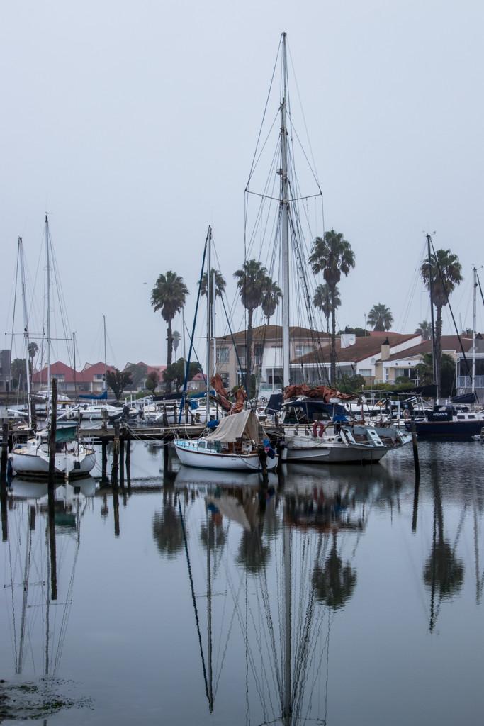 Misty Morning by seacreature