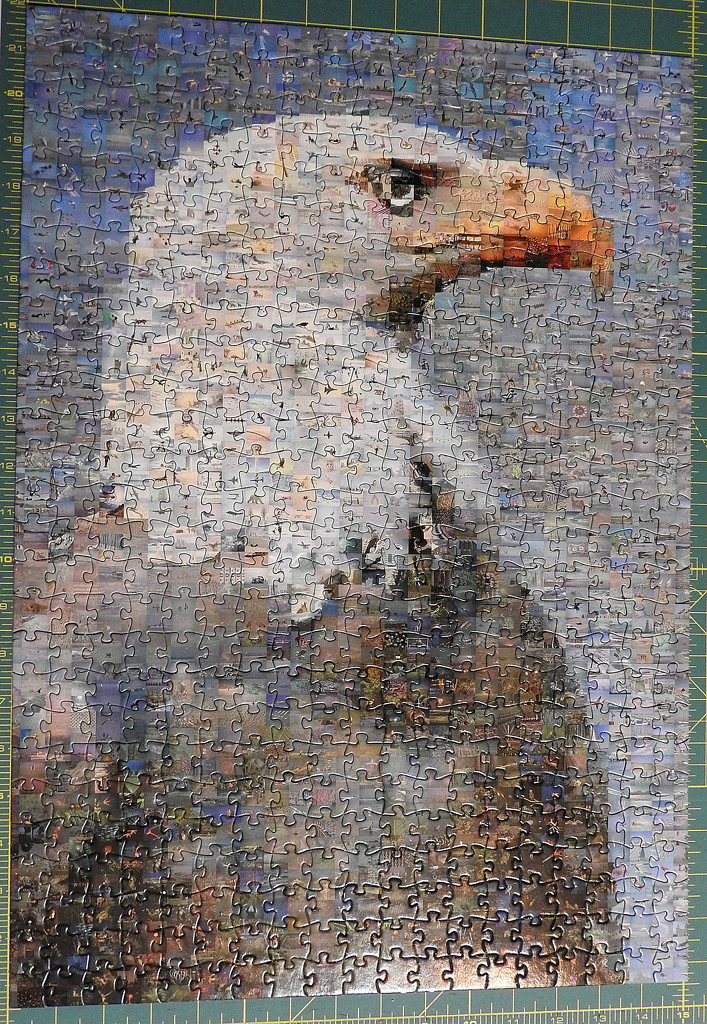 Eagle puzzle complete by homeschoolmom