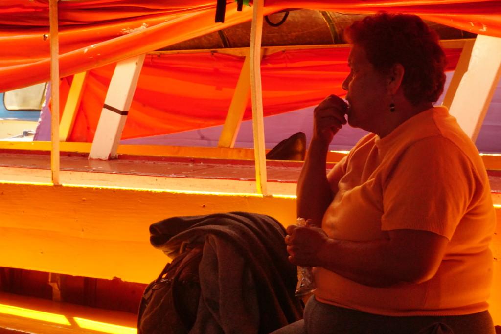 Orange on the Ferry by granagringa
