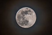20th Mar 2019 - The not quite full probably cloudy tomorrow moon