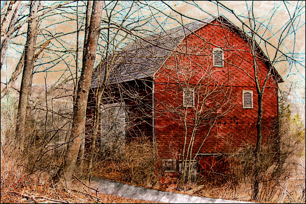 Barn on an Old Country Road by olivetreeann