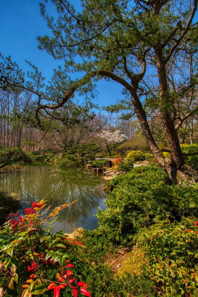 Peaceful Garden by kvphoto
