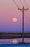 20th Mar 2019 - blue hour super moon