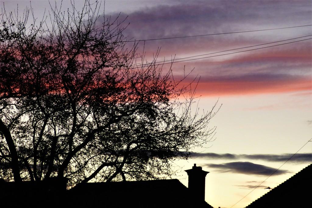 The evening sky  by beryl