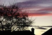 22nd Mar 2019 - The evening sky