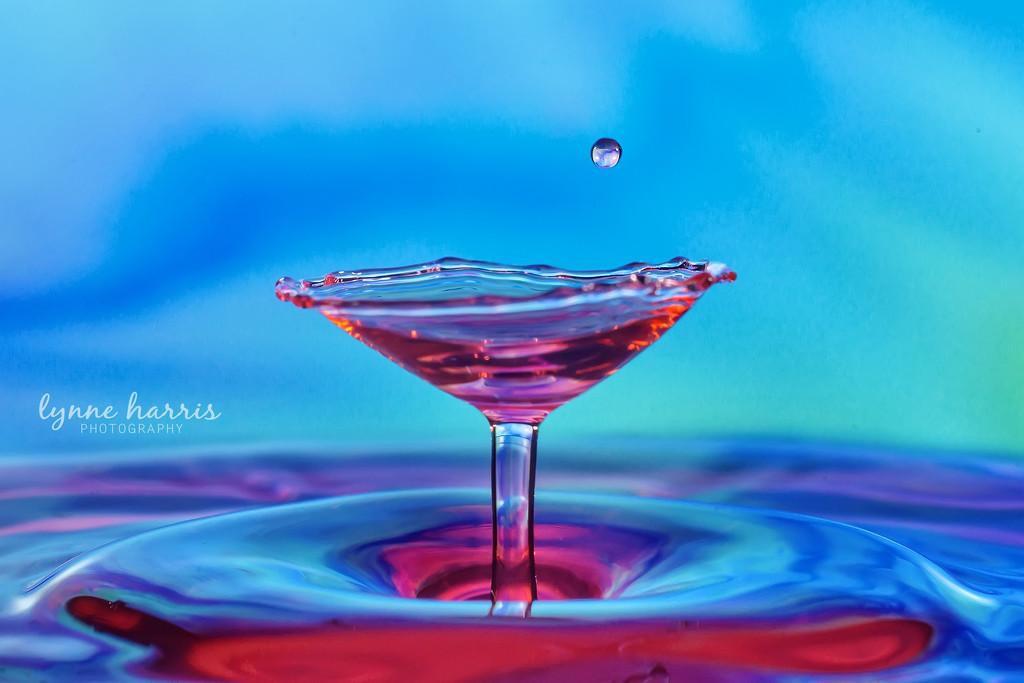Water Martini, Anyone? by lynne5477