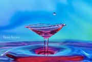23rd Mar 2019 - Water Martini, Anyone?